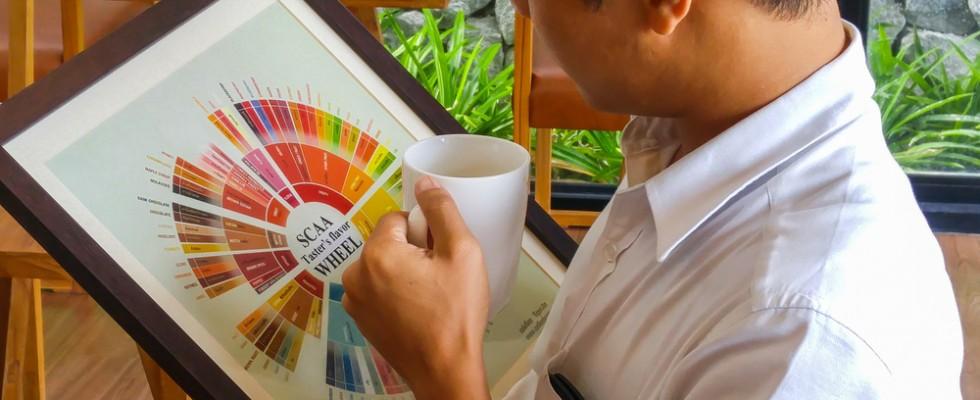 Degustare il caffè: come funziona la Coffee Flavor Wheel