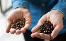 Specialty coffee: le domande all'esperto