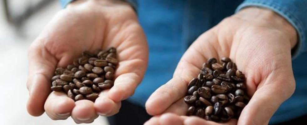 Tutto quello che volevi sapere sugli specialty coffee: intervista a Paolo Scimone