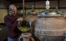 Un vino che ha 2500 anni: Nesos