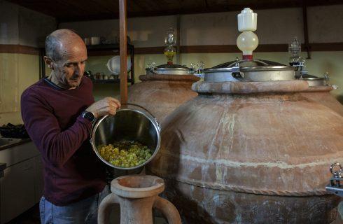 Un vino che ha 2500 anni e viene dal mare: Nesos