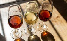 Piccola guida per scoprire lo sherry