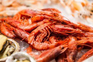 Non solo fiorentina: mangiare pesce a Firenze
