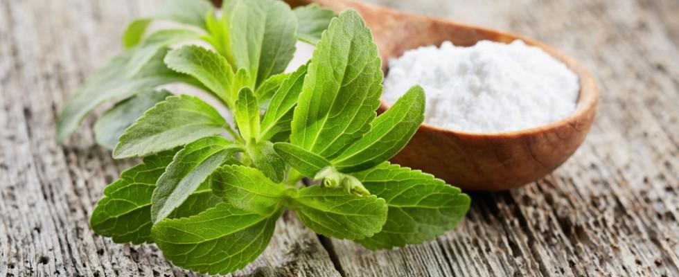 Miti da sfatare: la Stevia fa male?