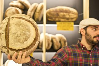 Pane quotidiano: i migliori forni di Bologna