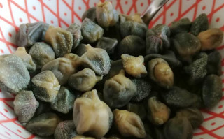 Scoprite i capperi di Gargnano con 5 ricette da chef