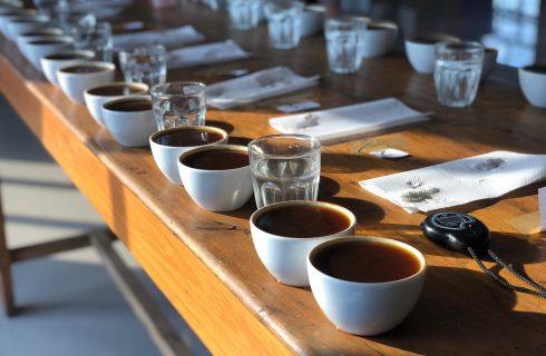 Caffè: come funziona la Cup of Excellence per valutare la qualità