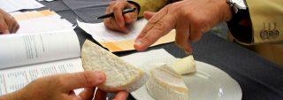 Formaticum 2020: torna la mostra mercato dedicata ai formaggi