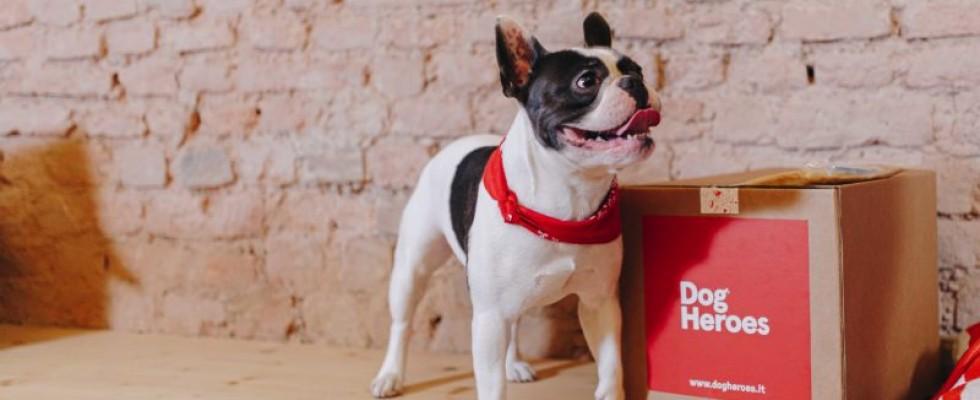 Dog Heroes, il delivery di cibo per cani