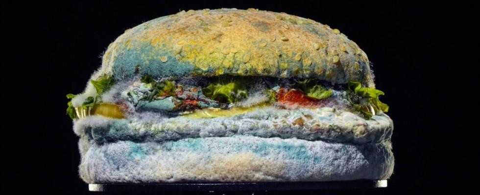 Perché Burger King pubblicizza un panino ammuffito?