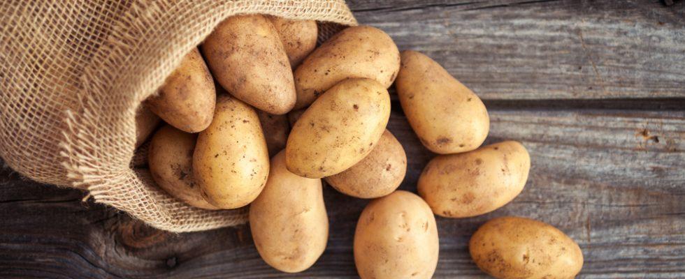 6 cose che non sapevi sulle patate