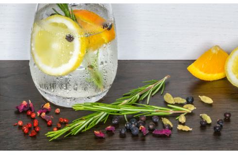 Cosa sono i botanicals e come hanno cambiato i nostri drink