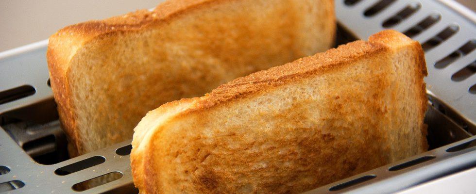 Tostapane: le diverse tipologie e quale scegliere