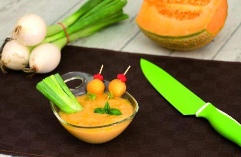 Crema salata di melone