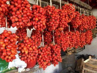 Perché tutti amano i Pomodorini del Piennolo