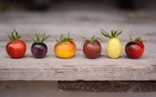 14 varietà di pomodori che dovresti usare