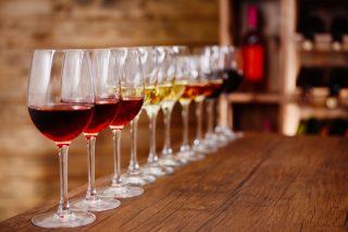 Ti racconto com'è davvero degustare quasi 100 vini al giorno per due settimane