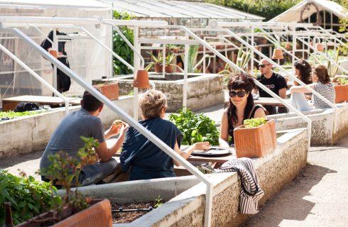 Ripartire: i migliori ristoranti dove mangiare all'aperto a Bologna