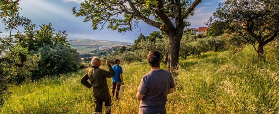 Coltivatori di emozioni, il farming diventa social
