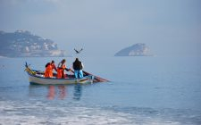 Liguria: mini guida di DOP, IGP e Presidi