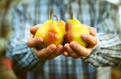 Sapete riconoscere gli alimenti biologici? Ecco come si fa