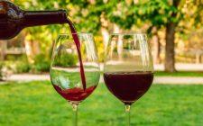5 piatti da preparare con il vino novello