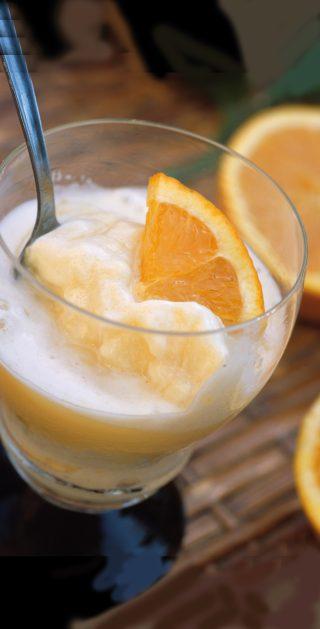 Sorbetto veloce all'arancia al bimby