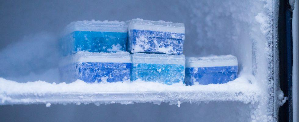 Trucchi fondamentali: come non far fare il ghiaccio al freezer