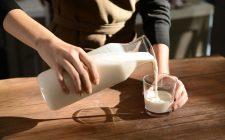 Impossible Milk sarà vegano e sostenibile