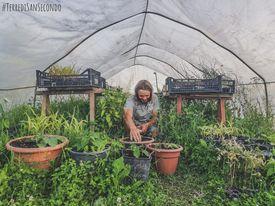 Nelle Terre di San Secondo c'è un'azienda che coltiva ortaggi rari