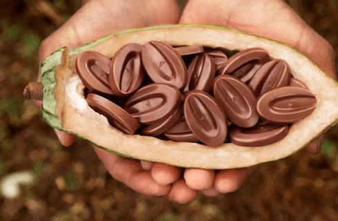 Il giro del mondo attraverso i cioccolati più insoliti