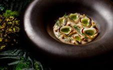 La cipolla valorizzata in 16 piatti da chef