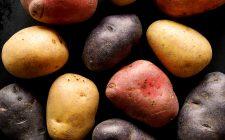 Per ogni patata esiste un piatto ideale