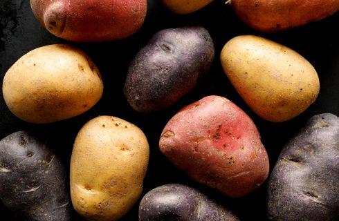 Piccola guida alle patate: a ogni tipologia il suo utilizzo