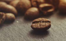 Caffè: cosa vuol dire 100 % Arabica?