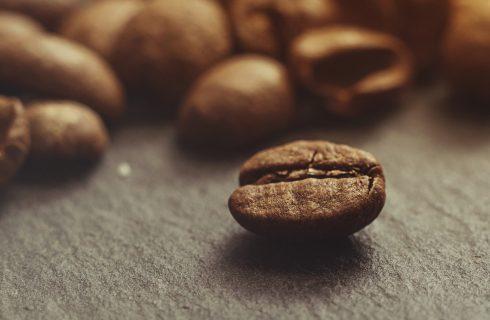 Che cosa significa caffè 100% Arabica?