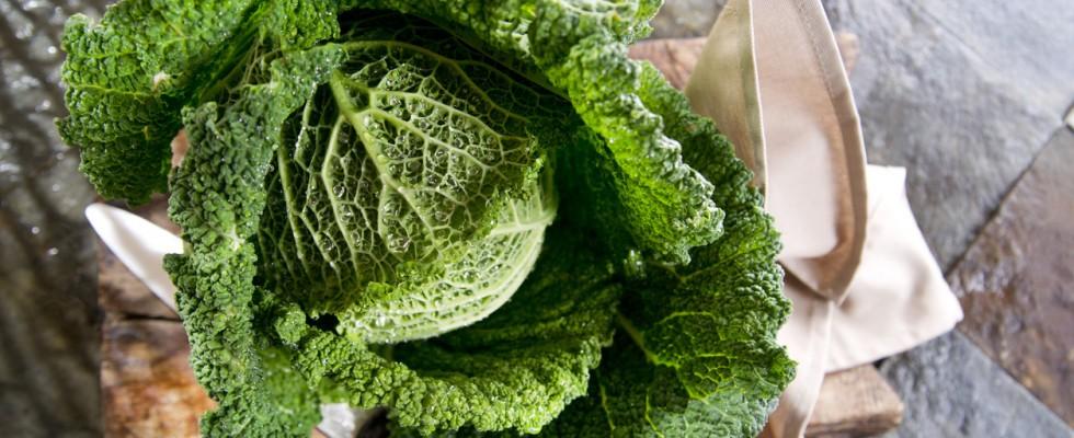Piccola guida alla verza: proprietà, ricette e abbinamenti