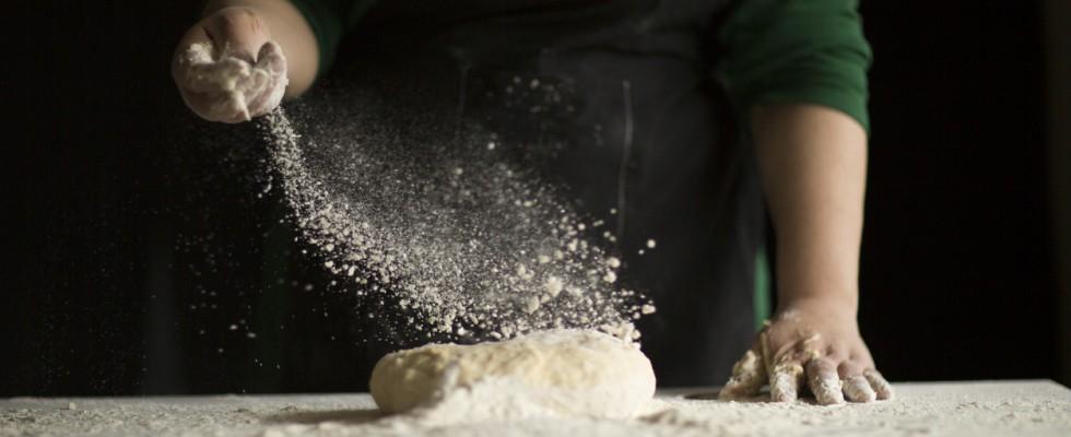 La forza delle farine: capire le differenze e riconoscere le tipologie