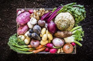 Cosa mangiano i climatariani?