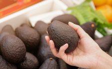 6 modi per conservare bene l'avocado