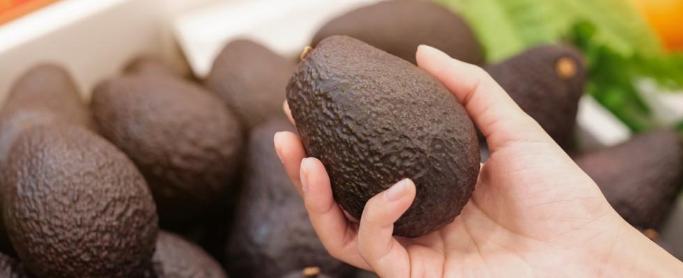 How to: conservare l'avocado in 6 modi diversi