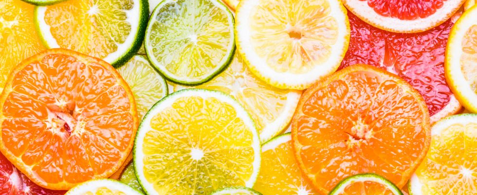 Il nostro menu di Febbraio: frutta e verdura di stagione, cosa cucinare e le festività