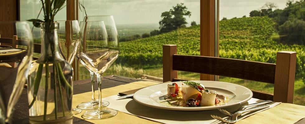Cincinnato Wine Resort, Cori