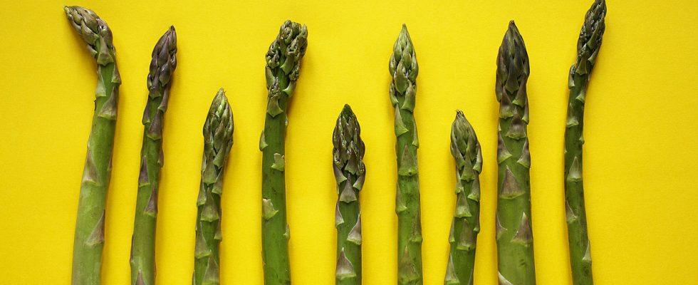 6 curiosità sugli asparagi che forse ancora non conoscevi