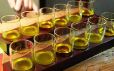 A lezione di olio: come si degusta?