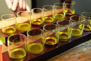 A lezione di olio: come si riconosce un extravergine di qualità