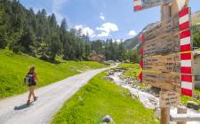 Trekking in Valtellina: scegli il tuo panino