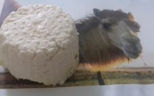 Gli 11 formaggi più assurdi del mondo