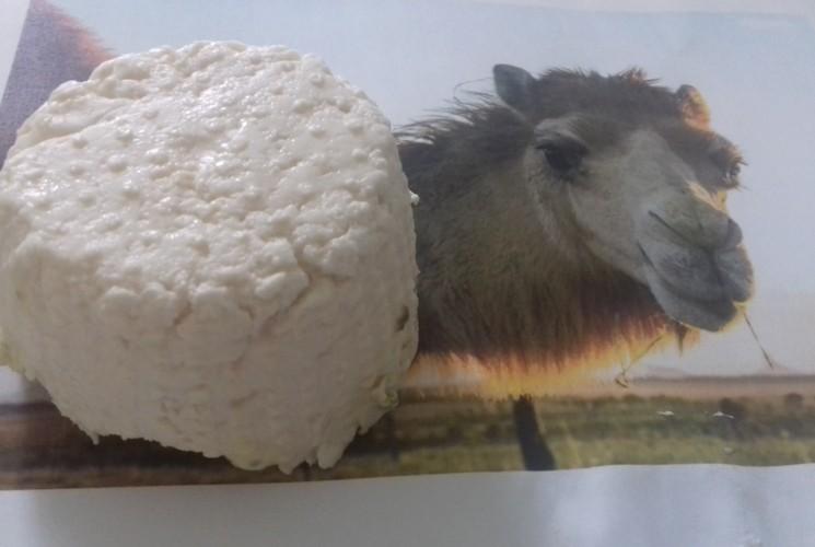 Gli 11 formaggi più assurdi del mondo - Foto 4