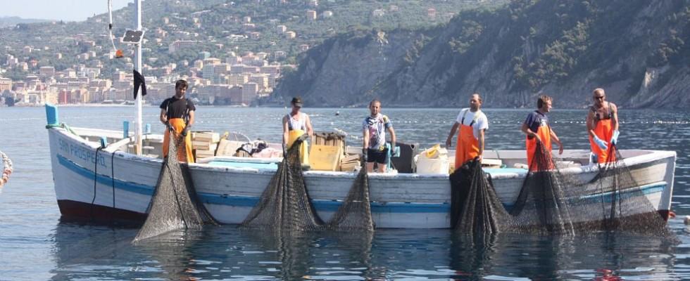 Slow Fish 2021 torna a Genova dal 1 al 4 luglio